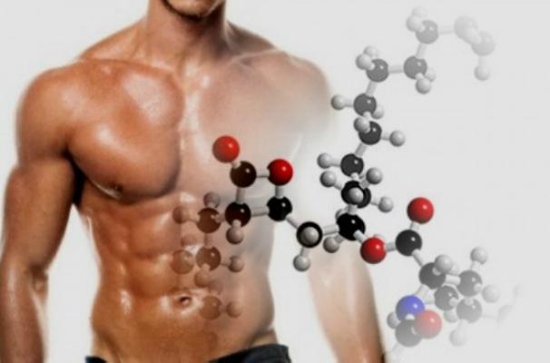 Funciones y beneficios de la Glutamina