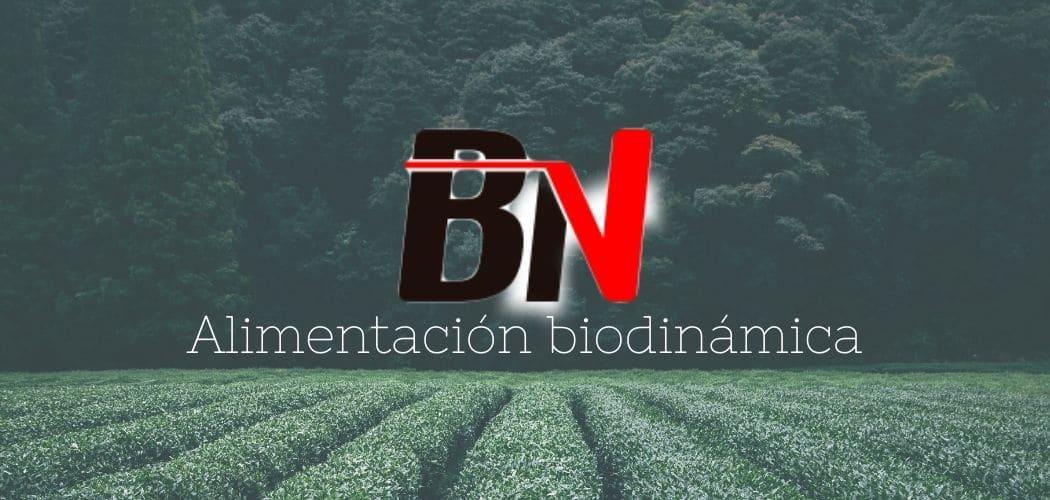 Cocina biodinámica